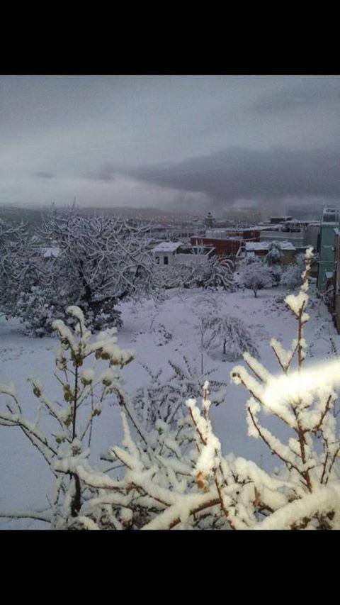 صور تساقط الثلوج في جرش صباح اليوم 12-12-2013