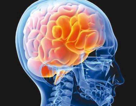 الإدراك الذهني ودوره في فهم الآخرين
