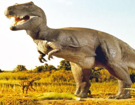 إعادة إحياء حيوانات ما قبل التاريخ