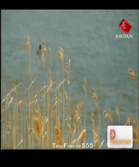اليوم 14/6/2013 قناة A1 Jordan على نايل سات 2013