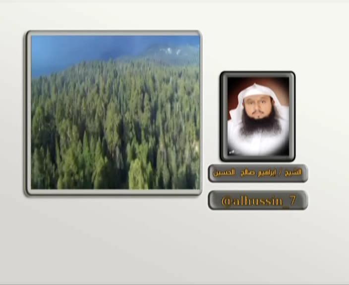 تردد قناة Taawel ,تردد قناة Taawel الجديد على عرب سات 2013