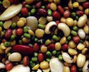 الالياف الغذائية في الفاصولياء المجففة تقلل الكوليسترول في الدم