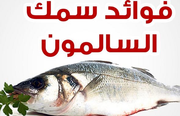 اهمية سمك السلمون ، فوائد سمك السلمون