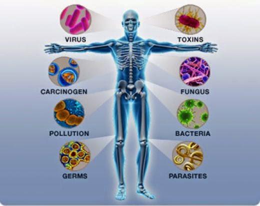 مشكله انتشار الجراثيم وكيفيه العلاج ، الحد من انتشار الجراثيم