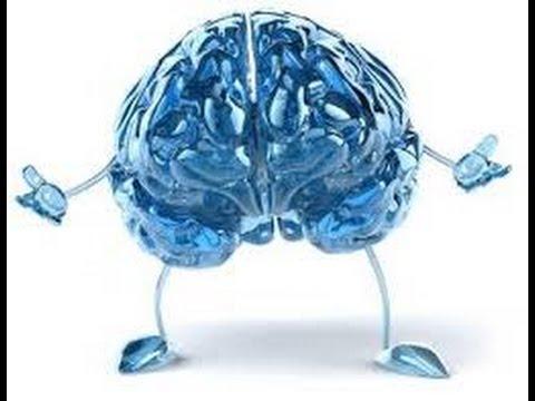 كيفية تقوية الذاكرة , تقوية الذاكرة طبيعيا
