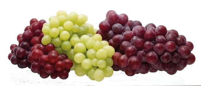 فوائد العنب العلاجيه ، فوائد العنب