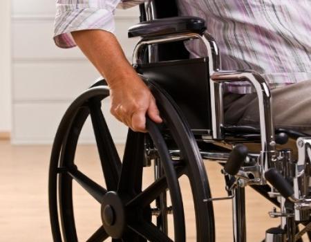 زرع نسيج مطاطي على النخاع الشوكي علاج تجريبي للشلل